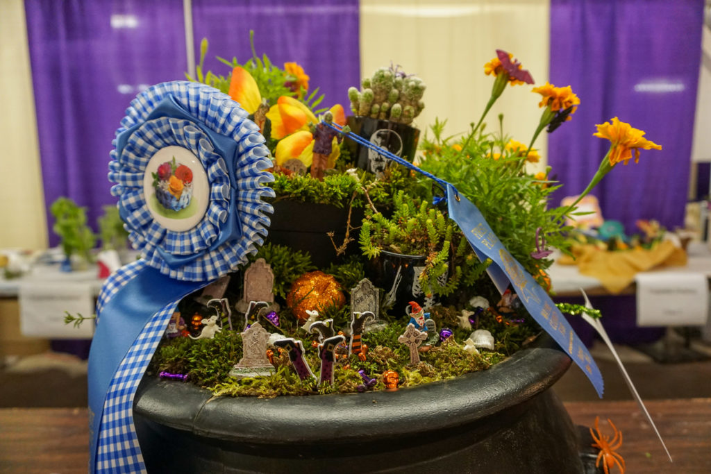 Fairy Garden Display at the Wayne County Fair in Palmyra