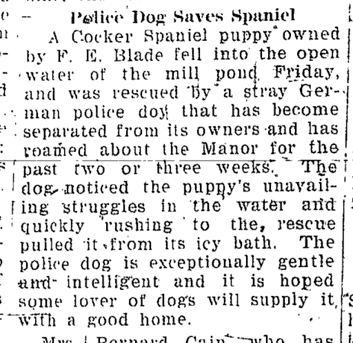 Sandy Creek News., March 08, 1939