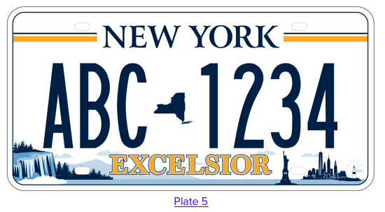 New York License Plate #5