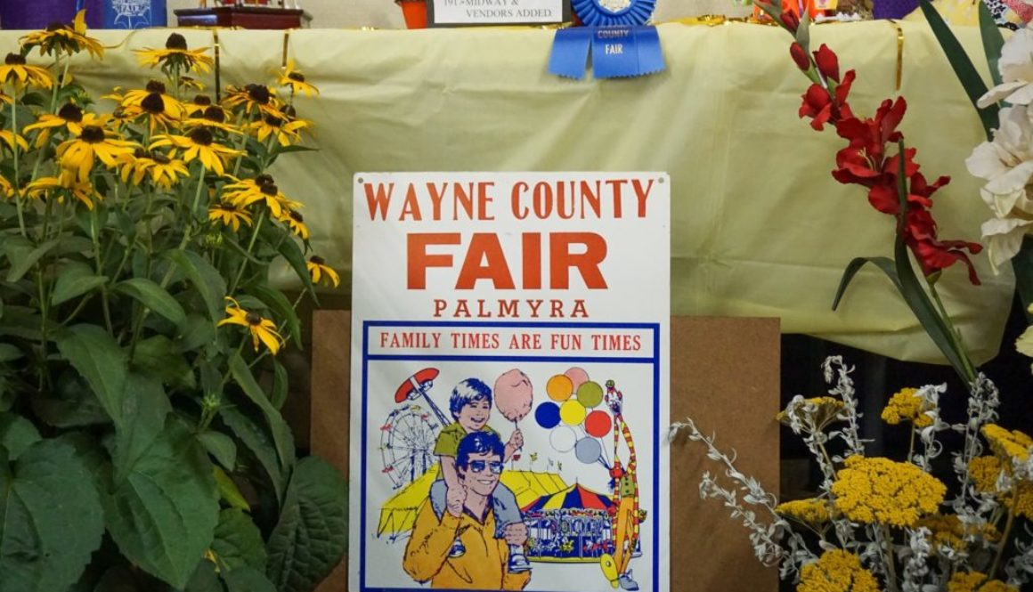 Wayne County Fair Friday Night - Featured Image