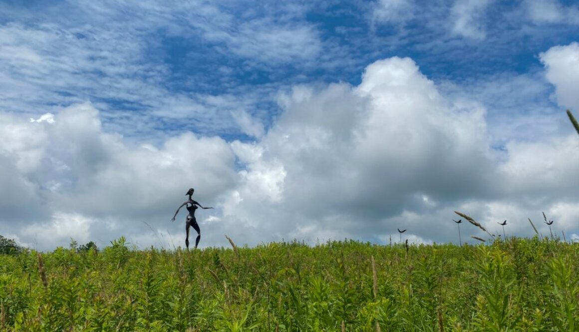 Griffis Sculpture Park in East Otto - Featured Image